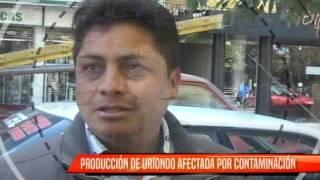 CONMINAN CUMPLIR MEDIDAS DE MITIGACIÓN EN GUADALQUIVIR