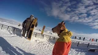 Антигайд сноуборду для новичков от коня 18+ маты | Wrong snowboard manual for beginners from horse.