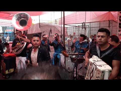El Sinaloense - Banda Los Intrépidos En Michelandia