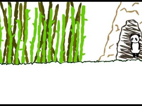 panda Animation