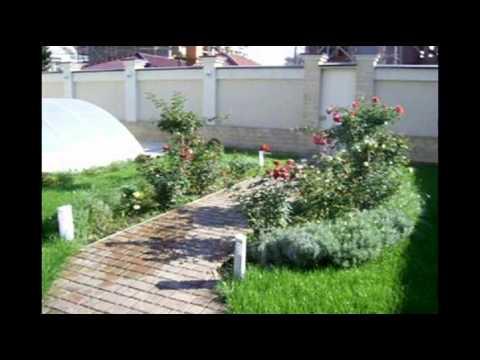 Дача   Дизайн  садового участка