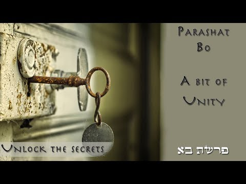 Parashat Bo - A bit of unity can do a lot - Rabbi Alon Anava