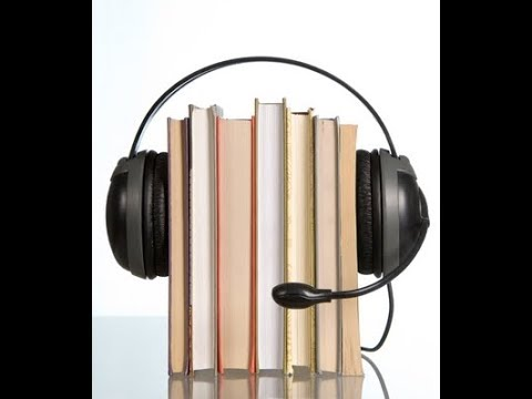 Capital Markets - Stock Market Fundamentals Audiobook