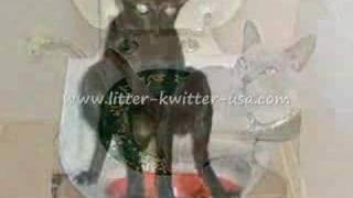 Litter Kwitter - Cat Toilet Training System