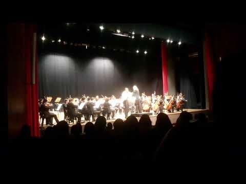 Mozart Horn Concerto No. 3 - Igor Yuri