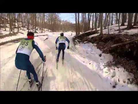Mountainview ski cross