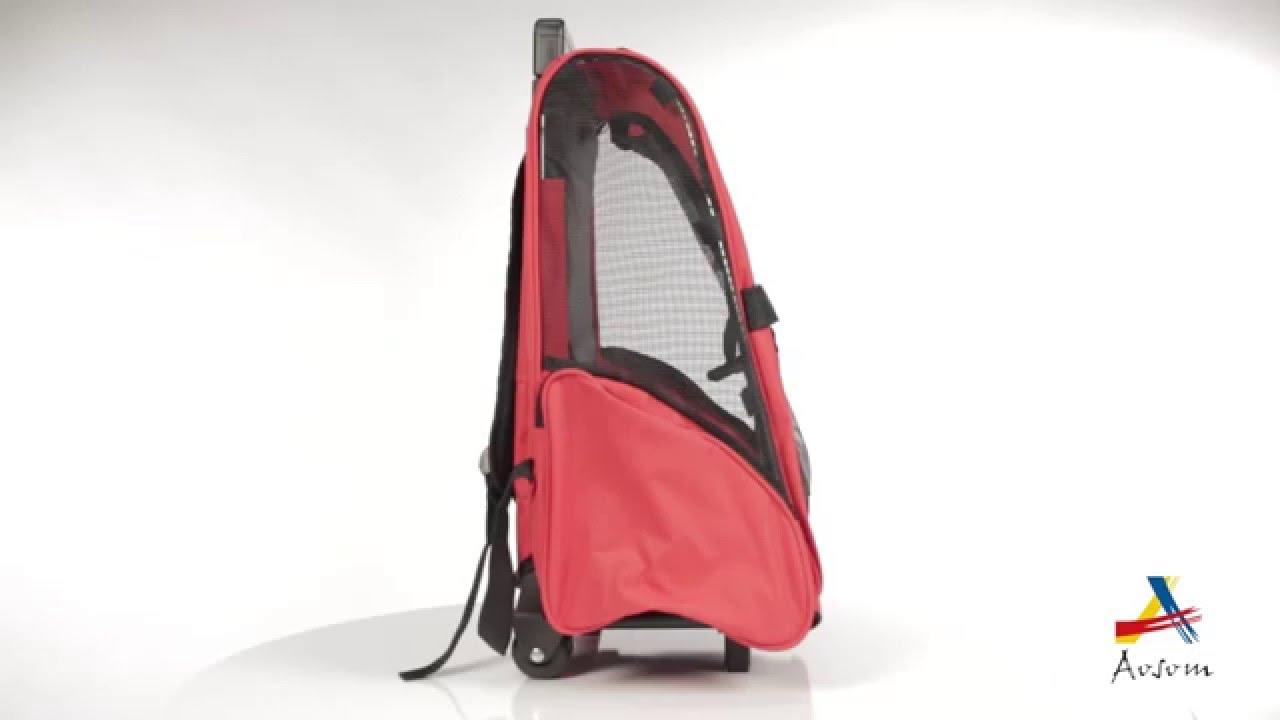 080a2e7194b9 Aosom  Pawhut Deluxe Pet Dog Carrier Backpack Luggage Box w  Wheels -  YouTube
