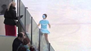 Чемпионат Украины по фигурному катанию среди юношей 2015