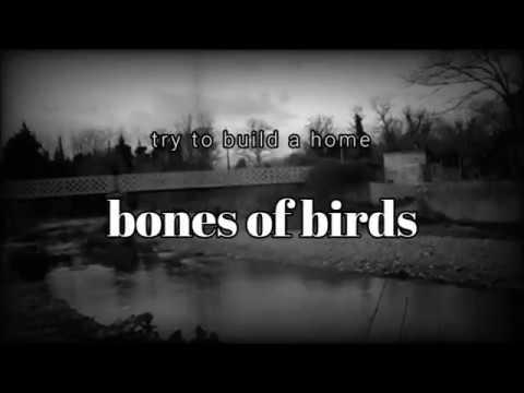 Chris Cornell - Bones of Birds acoustic lyric VIDEO