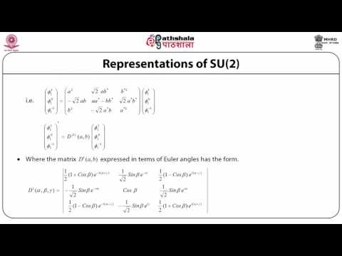Representations of  Rotation Group (PHY)