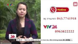 Tiêu Điểm: Dòng Sông Ô Nhiễm - Tin Tức VTV24