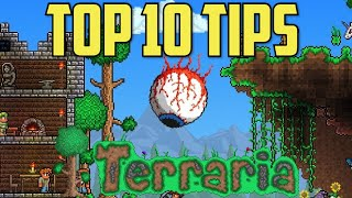 10 Tips For Begiฑners and New Players in Terraria!