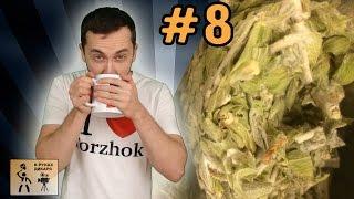 Критский горный чай обзор(site:: http://nikup.com/ Моя продукция: http://nikup.printdirect.ru/ eShop: http://store.dieza.net Official site: http://nikup.com VK: http://vk.com/nikup Facebook: ..., 2014-12-31T20:49:49.000Z)