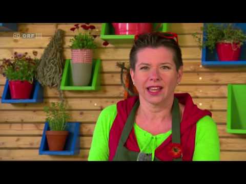 Natur.Wissen: Natur im Garten: Garten der Vielfalt