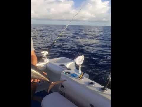Tavernier, Florida After Hurricane Irma Fishing Good Karma Sportfishing Part 2