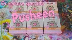 [Ouverture spéciale] Des boites surprises PUSHEEN super adorable ♥