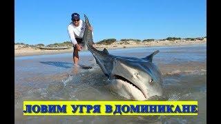 РИБАЛКА В ДОМІНІКАНІ на вудку. Домінікана рибалка з берега. Риби в Домінікані.