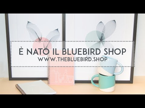 E' nato il The Bluebird Shop | The Bluebird Kitchen
