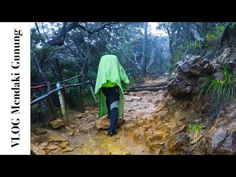 Hujan Lebat & Kilat Ketika Mendaki Gunung Kinabalu | DAY 1 | VLOG #047