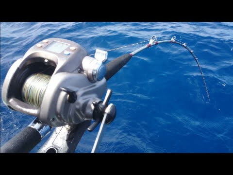 Deep Drop Bottom Fishing With Electric Reel