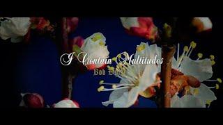 Bob Dylan - I Contain Multitudes