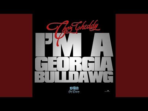 Im a Georgia Bulldawg