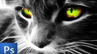Editing A Cat's Eye Color PLUS Color Splash (Photoshop CS6)