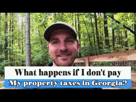 What happens if I don't pay my property taxes in Georgia?