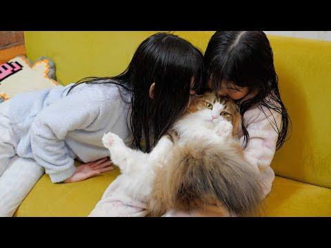 娘達は寝る前に猫を嗅ぐと幸せな匂いに包まれるそうです