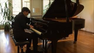 Allegro Barbaro, Sz.49 (Bartók, Béla)