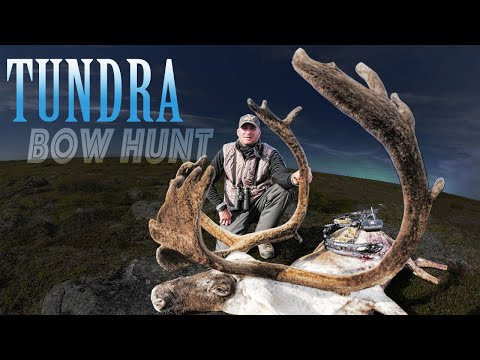Caribou Bowhunt - Guy Eastman Hunts Quebec