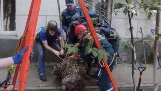 Специалисты МЧС обследовали обвалившийся участок газона(В районе площади Ушакова произошло подземное обрушение грунта. Это случилось рядом со зданием по улице..., 2016-03-30T15:12:08.000Z)