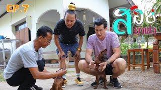 งอบและสุนัขพันธ์ุไทยหลังอาน- สอยมาเล่า l EP.7