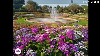 Mughal Garden 2021 (During Udyanotsav)Rashtrapati Bhavan New Delhi February - March Online booking
