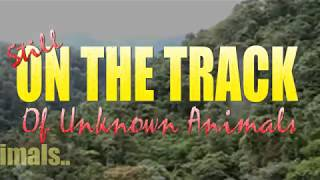 On The Track (of Unknown Animals) Ep. 88 (Mysterious Carcass, Monster Hunter, British Bigfoot etc)