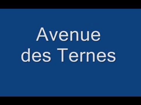 Avenue des Ternes Paris Arrondissement  17e