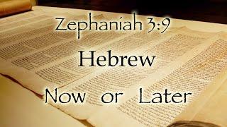 zephaniah 3 9 hebrew now or hebrew later