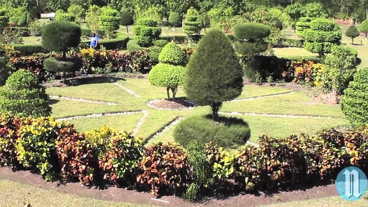 Le jardin botanique des cayes youtube for Le jardin botanique camping