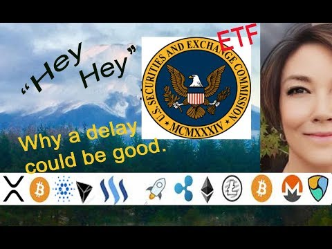 ETF VanEck SolidX Bitcoin Trust Ruling Delay Could Be Positive....here's Why.