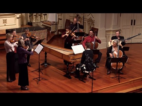 C.P.E. Bach: Cello Concerto in A Major Wq. 172; Tanya Tomkins, Voices of Music, Largo, 4K UHD