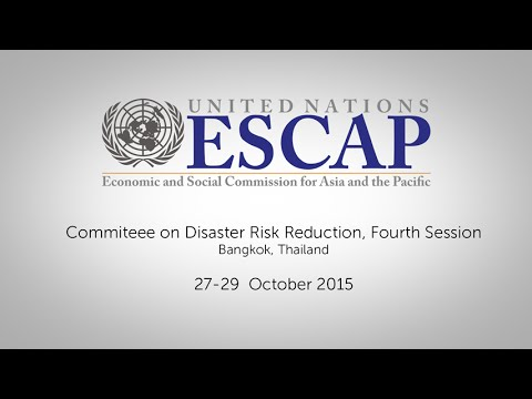 Committee on Disaster Risk Reduction, Fourth Session (Adoption of Report)