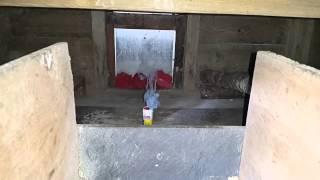 Defumigating chicken coop of mites