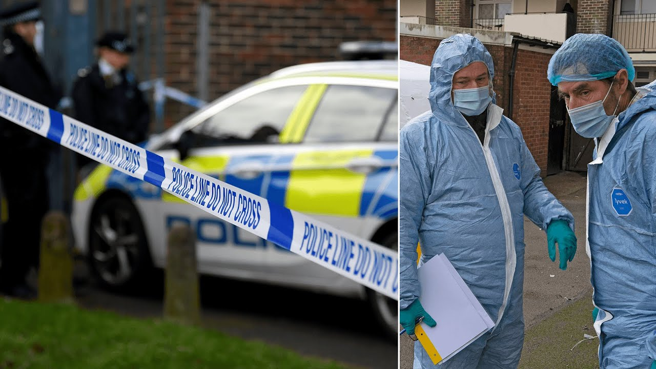 One dead and 9 injured in 'abhorrent' night of stabbings in Croydon, South London