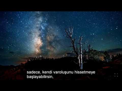 Alan Watts - Dream of Life (Türkçe Altyazı) HD