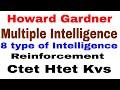 CDP- Howard Gardner 's Multiple Intelligence Theory ! 8 Type Intelligence ! Reinforcement Type