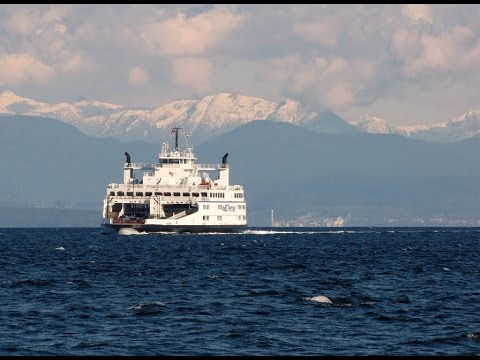 Island Sky ferry on Comox - Powell River route