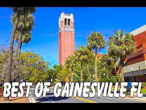Gainesville, FL: Swamp Head Brewery, Farmer's Market, & Blueberry Picking!