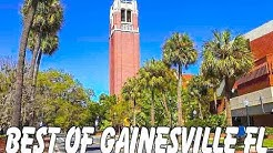Gainesville, FL: Swamp Head Brewery, Farmer's Market, & Blueberry Picking!