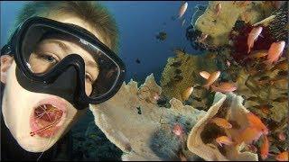 Đây là dịch vụ tôm xỉa răng độc đáo của đại dương mà chỉ số ít khách hàng đặc biệt mới được thử!