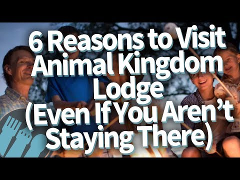 6 Reasons to Visit Animal Kingdom Lodge